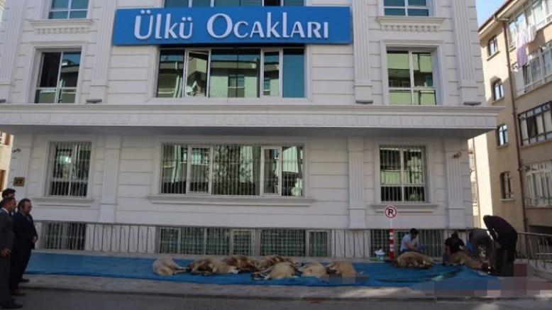 Barış Pınarı operasyonuna katılan Mehmetçik için kurban