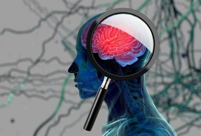Bilim insanları beynin sırlarını çözmek için buluştu