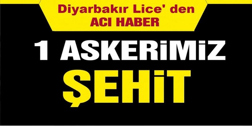 Diyarbakır Lice' de bir askerimiz şehit oldu, iki asker yaralandı