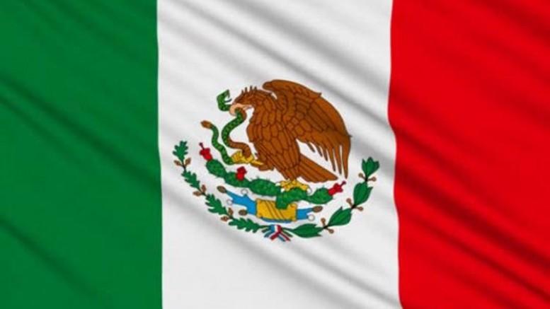 Meksika'da kaçırılan 24 göçmen kurtarıldı