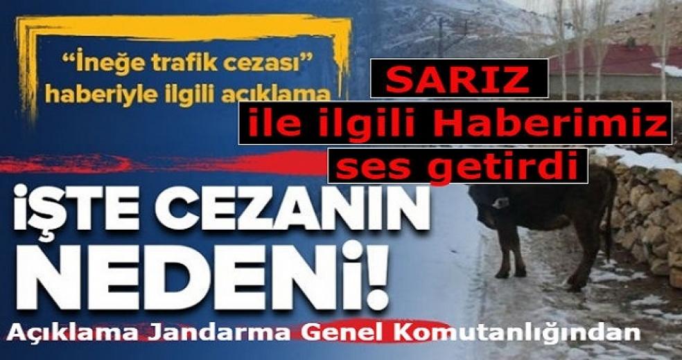 Sarız' da ineğe trafik cezası' başlıklı habere açıklama Jandarma Genel Komutanlığından geldi