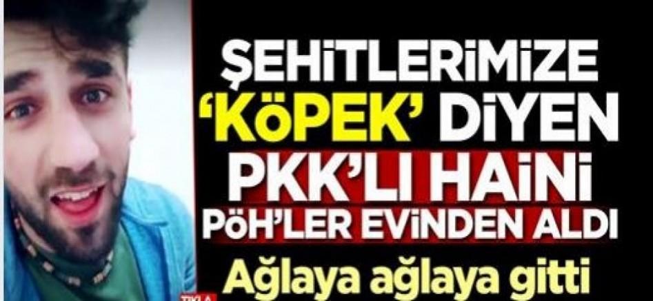 Şehitlerimize 'Köpek' diyen PKK'lı Reşat Muaz gözaltına alındı
